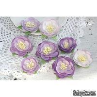 Набор цветов TM Iris - Dessert оттенки сиреневого, 35-45 мм, 8 шт