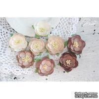 Набор цветов TM Iris - Dessert оттенки коричневого, 35-45 мм, 8 шт