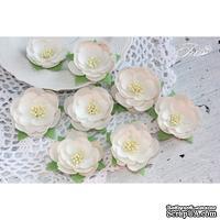Набор цветов TM Iris - Dessert Нежный беж, цвет бежевый, 35-45 мм, 8 шт