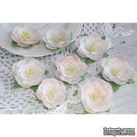 Набор цветов TM Iris - Dessert Нежная роза, цвет светло-розовый, 35-45 мм, 8 шт