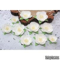 Набор цветов TM Iris - Dessert Нежный белый, 25-45 мм, 10 шт
