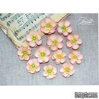 Набор цветов TM Iris - Denise розово-персиковые, 12 шт