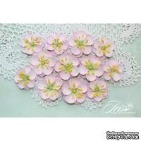 Набор цветов TM Iris - Denise светло-розовые, 12 шт