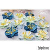 Набор цветов TM Iris - Denise голубой микс, 12 шт