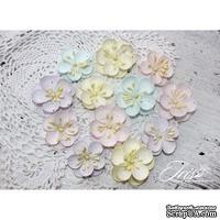 Набор цветов TM Iris - Denise Baby Shabby, 12 шт