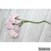 Набор цветов TM Iris - Vanille flowers Свежее утро, розовые с голубым, 5 шт
