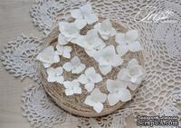 Набор гортензий белого цвета от Iris, 22-33 мм, 15 шт - ScrapUA.com