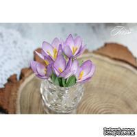 Набор цветов TM Iris - Крокусы фиолетовые, 5 шт