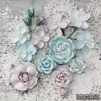 Набор цветов TM Iris - Mystery Dream Морозный иней, 14 шт