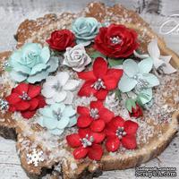 Набор цветов TM Iris - Mystery Dream Яркая зима, 17 шт