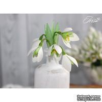 Набор цветов TM Iris - Подснежники, 5 шт