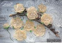 Набор цветов Royalty flowers Нежный персик, ТМ Iris, 9 шт - ScrapUA.com