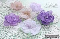Набор цветов Royalty flowers Сиренево-бежевый микс, ТМ Iris, 6 шт - ScrapUA.com