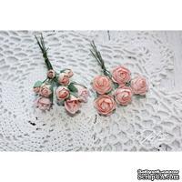 Набор цветов TM Iris - Viva Rosita розово-персиковые, 14 шт