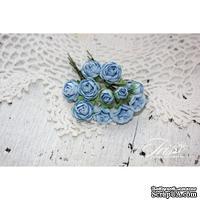 Набор цветов TM Iris - Viva Rosita синие, 14 шт