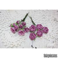 Набор цветов TM Iris - Viva Rosita сирень, 14 шт