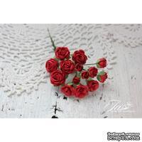 Набор цветов TM Iris - Viva Rosita красные, 14 шт