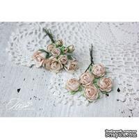 Набор цветов TM Iris - Viva Rosita бежевые, 14 шт