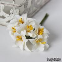 Лилии белые, 6 шт.