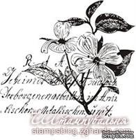 Акриловый штамп KOL003b Коллаж цветы, размер 5,1 * 5 см