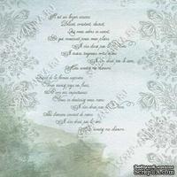 Скрапбумага для форзацев Коллекция 6_2, Поэзия на серо-голубом, односторонняя, 20х29 см