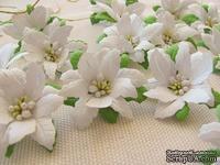 Уютный декор от LESHCHENKO - Набор бумажных цветов «Пуансеттия 01», белые с зелеными листьями, 4 шт.