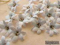 Уютный декор от LESHCHENKO - Набор бумажных цветов «Пуансеттия 02», бледно - голубые, 4 шт.