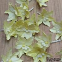 Набор бумажных лилий от Scrap Klumba, нежно-лимонные,   12шт., диаметр 3,2смі