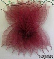 Скелетированные листья Skeleton Rubber leaves, цвет бордовый, 5-7 см, 10 шт.