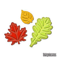 Лезвия от Spellbinders - Fall Leaves Punch Templates for Presto Punch - Осенние листья, 3 шт