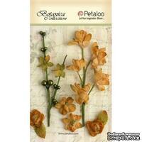 Набор объемных цветов Petaloo - FloralEphemera - Amber