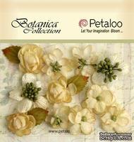 Набор объемных цветов Petaloo - Botanica Minis x 11 - All Ivory