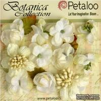 Набор объемных цветов Petaloo - Botanica Minis - White