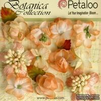 Набор объемных цветов Petaloo - Botanica Minis - Peach