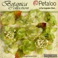 Набор объемных цветов Petaloo - Botanica Minis - Pistachio