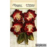 Набор объемных цветов Petaloo - Botanica Blooms x 4 - All Red
