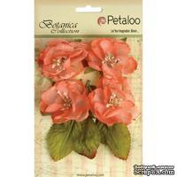 Набор объемных цветов Petaloo - Botanica Blooms x4 - Coral
