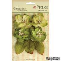 Набор объемных цветов Petaloo - Botanica Blooms x4 - Pistachio