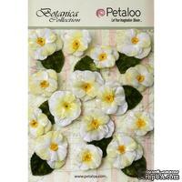 Набор объемных цветов (анютины глазки) Petaloo - Velvet Pansies x 15 - White