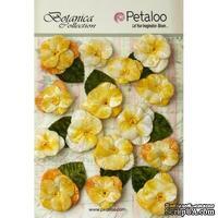 Набор объемных цветов (анютины глазки) Petaloo - Velvet Pansies x 15 - Amber