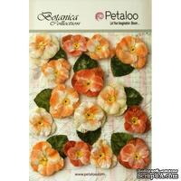 Набор объемных цветов (анютины глазки) Petaloo - Velvet Pansies x 15 - Apricot