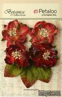 Набор объемных цветов Petaloo - Sugared Blooms - Burgundy