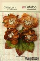 Набор объемных цветов Petaloo - Sugared Blooms - Mocha