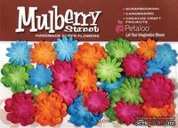 Набор цветов Petaloо - New Mini Mulb.Paper Delphiniums - Fush/Grn/Blu/Orng