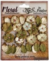 Набор цветов и листиков Petaloo - Darjeeling Petites Cream/Green, 24 шт.