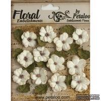 Набор цветов и листиков Petaloo - Petites - Teastained Cream