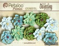 Набор цветов (георгин) Petaloo - Darjeeling Collection - Dahlias - Cottage Blue
