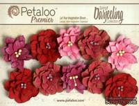 Набор цветов (георгин) Petaloo - Darjeeling Collection - Dahlias - Red Raspberry