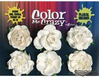 Набор объемных цветов (роз) Petaloo - Color Me Crazy Mixed Floral