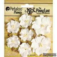 Набор объемных цветов (диких роз) Petaloo - Penny Lane Mini Wild Roses x7 - White